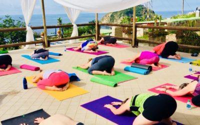 Finding your Fitness Zen